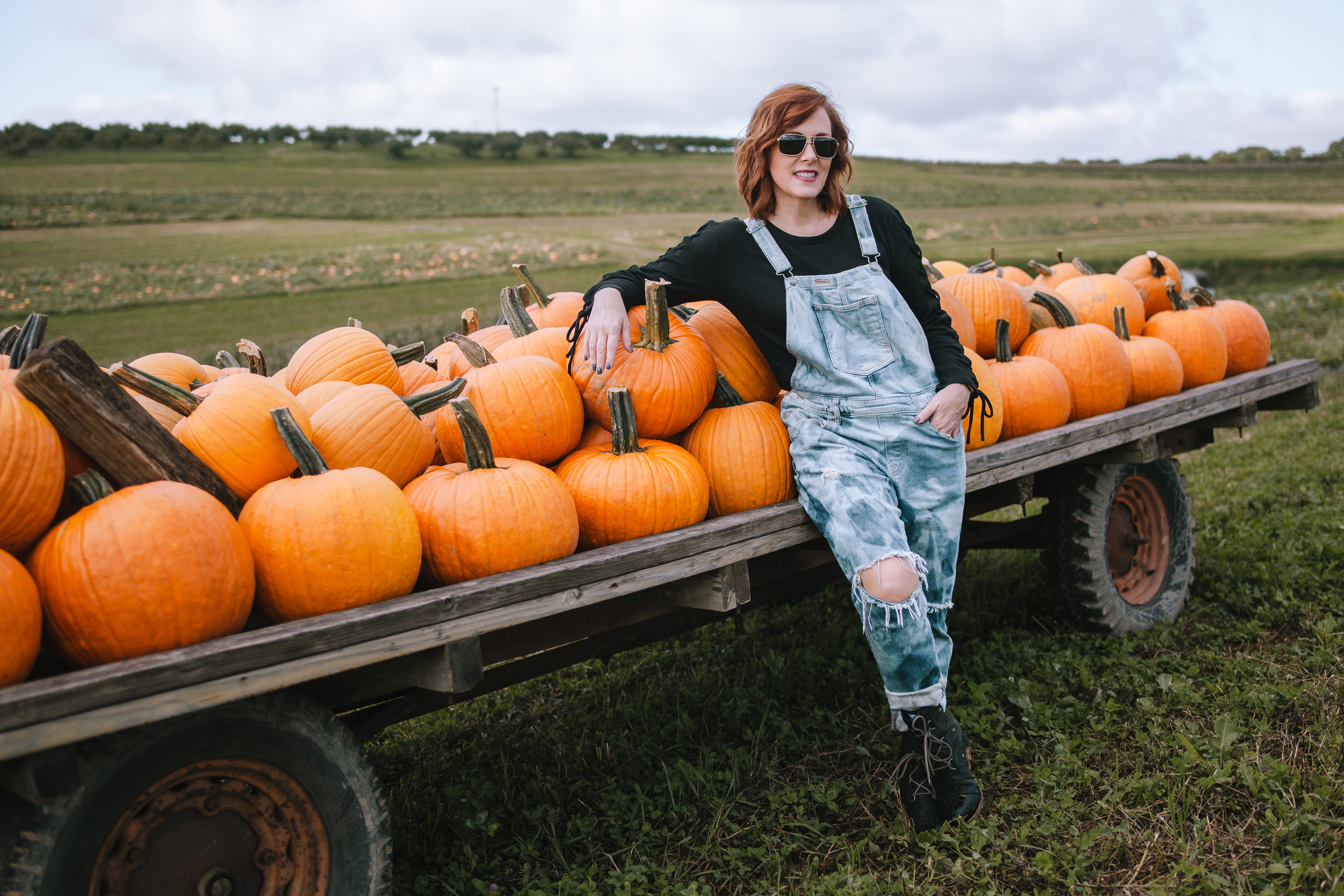 The Most Sincere Pumpkin Patch